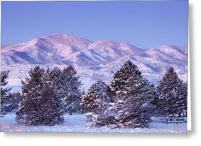 Snow Tree Prints Greeting Cards - Snowfall Sunrise Greeting Card by Darren  White