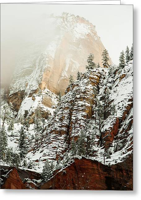 Snowfall Zion National Park Utah Greeting Card by Robert Ford