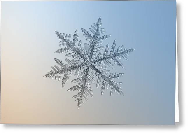 Frost Greeting Cards - Snowflake photo - Silverware Greeting Card by Alexey Kljatov
