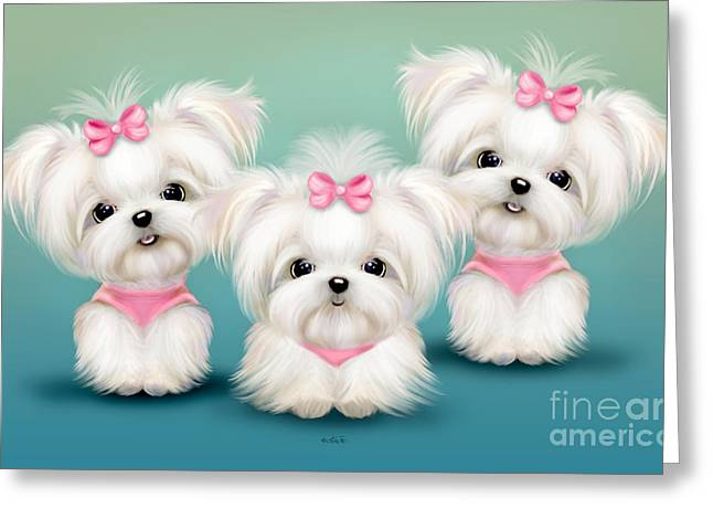 White Maltese Greeting Cards - Snowflakes  Greeting Card by Catia Cho