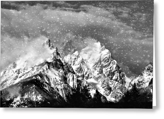 Elevation Digital Art Greeting Cards - Snowing In The Tetons Greeting Card by Dan Sproul