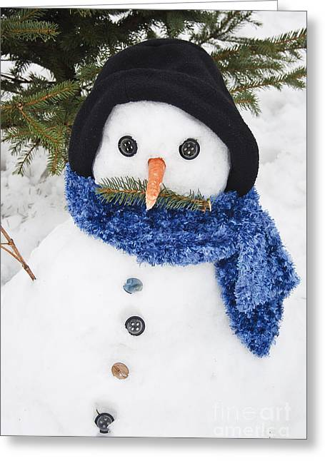 Wintry Greeting Cards - Snowman Greeting Card by Dan Radi