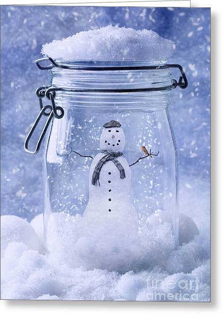 Lids Greeting Cards - Snowman With Robin Greeting Card by Amanda And Christopher Elwell