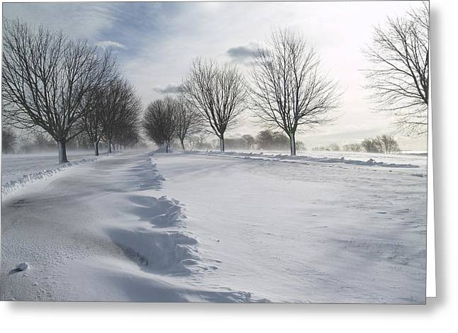 Snow Drifts Greeting Cards - Snowscape Greeting Card by Patricia McKay
