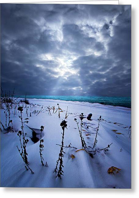 Geographic Greeting Cards - Snowscape Greeting Card by Phil Koch