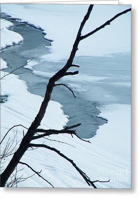 Ice Greeting Cards - Snowserpent Greeting Card by Brian Boyle