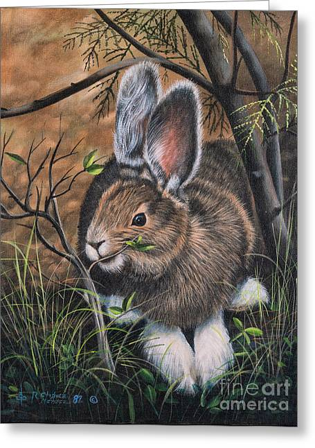 Bunny Greeting Cards - Snowshoe Rabbit Greeting Card by Ricardo Chavez-Mendez