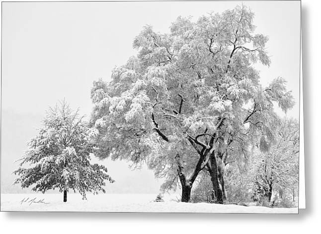 Snowstorm Digital Art Greeting Cards - Snowstorm swing Greeting Card by Al  Mueller