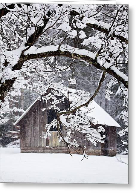 Snow Tree Prints Greeting Cards - Snowy Barn 2 Greeting Card by Rob Travis