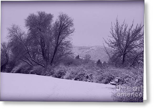 Snowy Bench in Purple Greeting Card by Carol Groenen