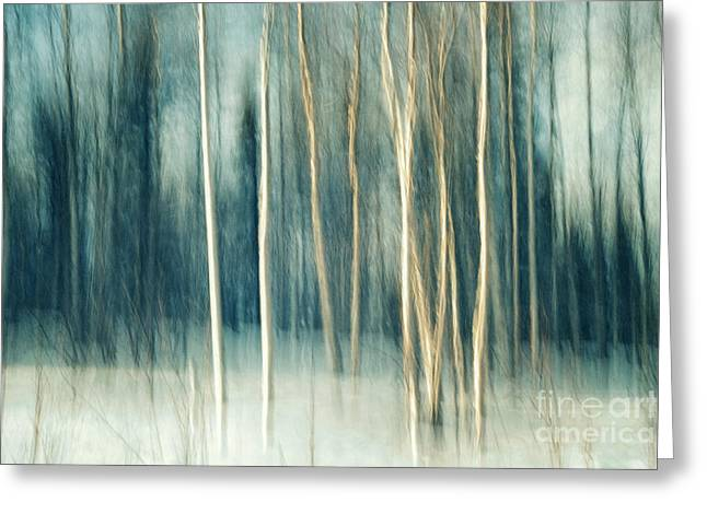 Snow Abstract Greeting Cards - Snowy birch grove Greeting Card by Priska Wettstein