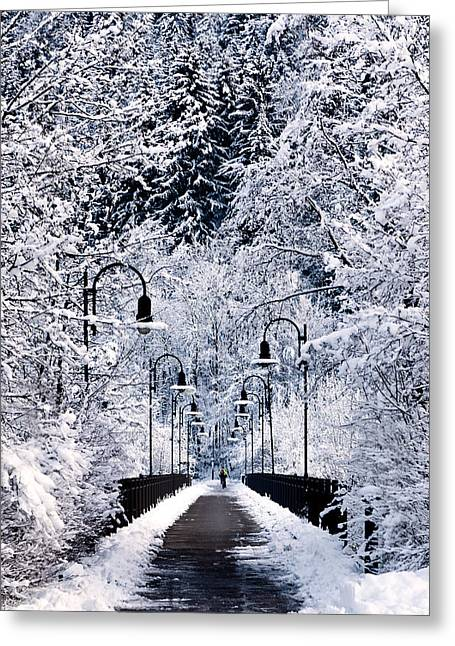 Germany Greeting Cards - Snowy bridge Greeting Card by Jorge Maia
