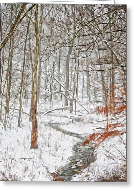 White River Digital Art Greeting Cards - Snowy Brook in the Wood Greeting Card by Brian Mollenkopf