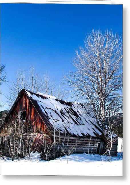 Haybales Greeting Cards - Snowy Cabin Greeting Card by Robert Bales