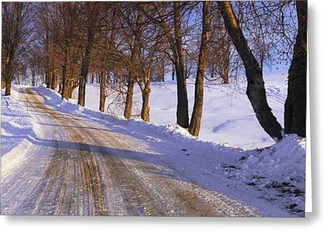 Tree Lines Greeting Cards - Snowy Country Road Greeting Card by Panoramic Images