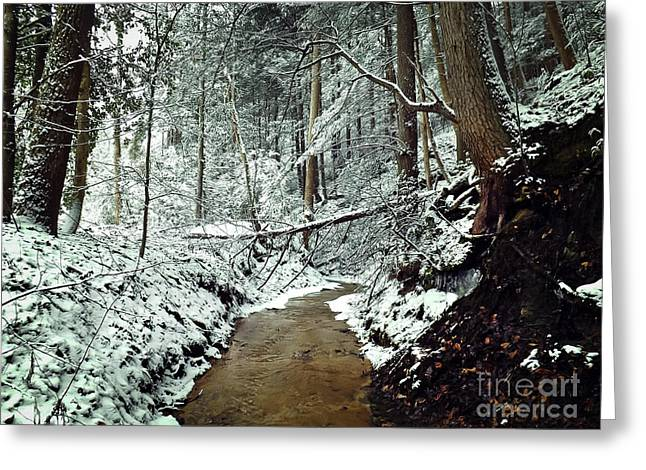 Wintry Photographs Greeting Cards - Snowy Creek Greeting Card by Lena Auxier