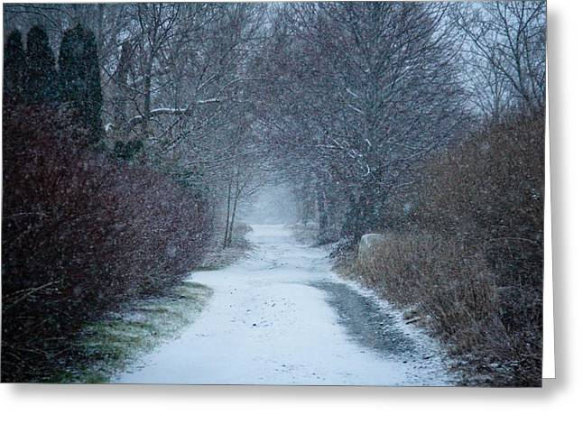 Allan Millora Greeting Cards - Snowy Day in Newport Greeting Card by Allan Millora