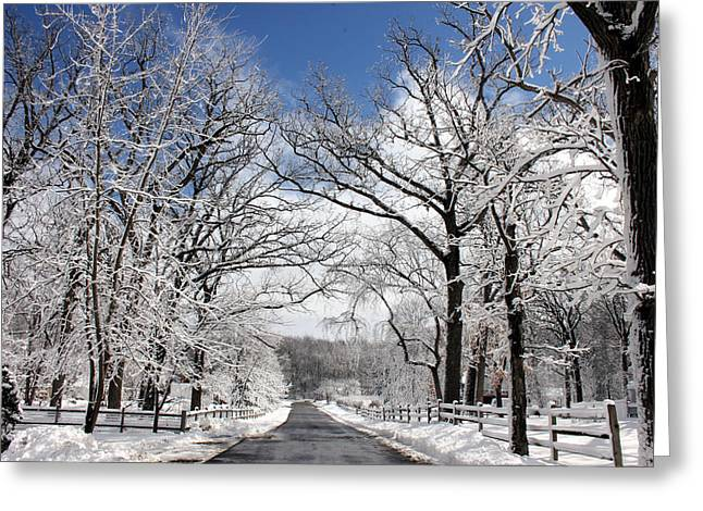 Snow-covered Landscape Greeting Cards - Snowy Day Greeting Card by Jackie Novak