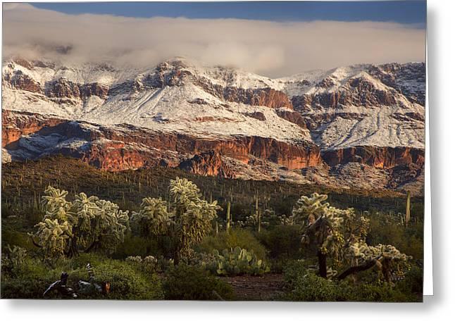 Snowy Desert Mountain Range Greeting Card by Dave Dilli