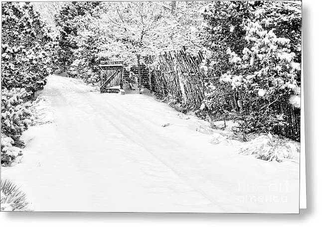 Southwest Gate Digital Art Greeting Cards - Snowy Entrance Greeting Card by Roselynne Broussard