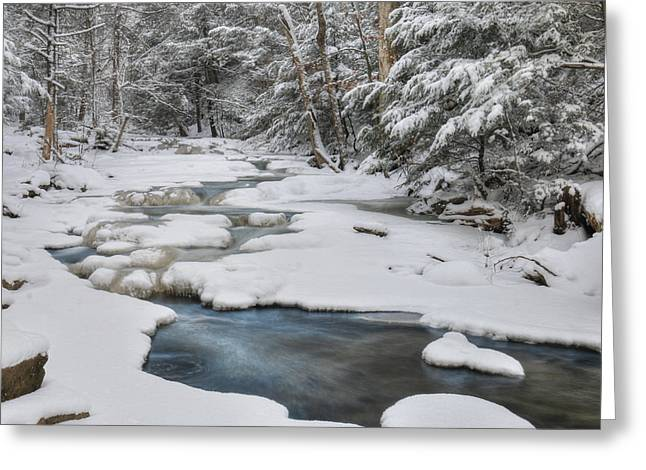 Snowy Falls Trail Greeting Card by Lori Deiter