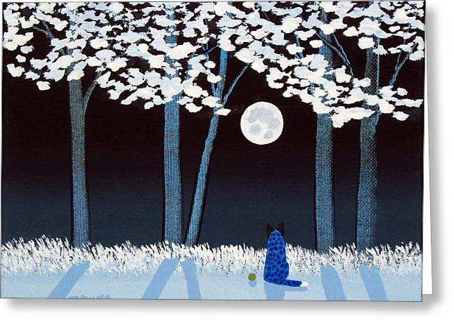 Blue Heeler Greeting Cards - Snowy Forest Greeting Card by Todd Young