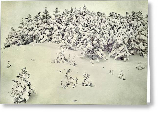 Granada Greeting Cards - Snowy forest Vintage Greeting Card by Guido Montanes Castillo