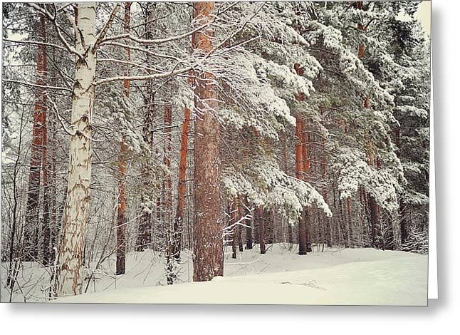 Snow Falling Greeting Cards - Snowy Memory of the Woods Greeting Card by Jenny Rainbow
