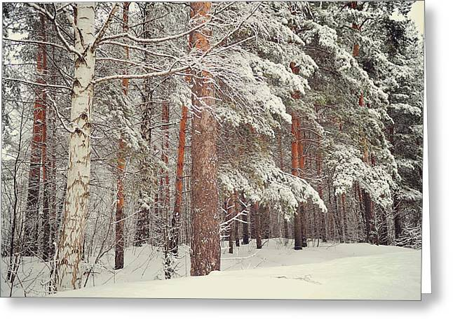 Snowy Memory Of The Woods Greeting Card by Jenny Rainbow