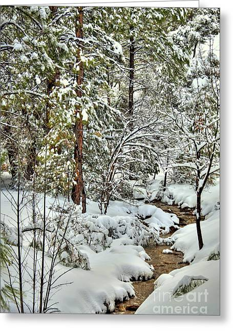 Snowstorm Framed Prints Greeting Cards - Snowy Mountain Creek Greeting Card by K D Graves