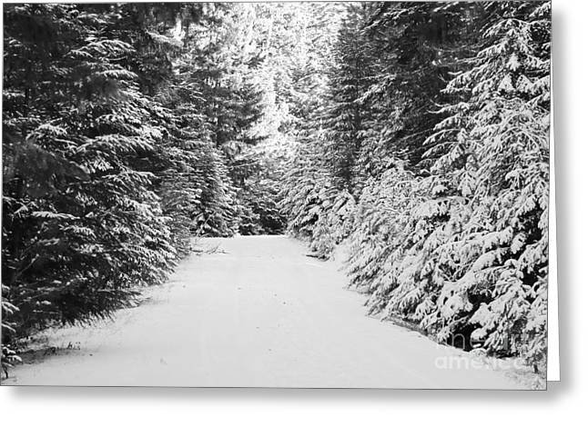 Snowy Roads Photographs Greeting Cards - Snowy Mountain Road - Black and White Greeting Card by Carol Groenen