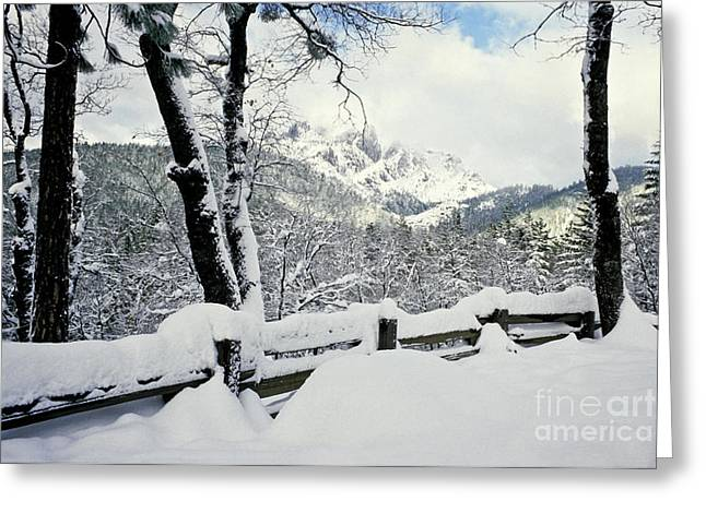 Snow-covered Landscape Greeting Cards - Snowy Mountains Greeting Card by Richard and Ellen Thane