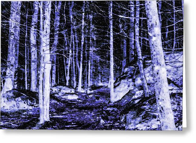 Snow-covered Landscape Digital Art Greeting Cards - Snowy Night Greeting Card by Barry Jones