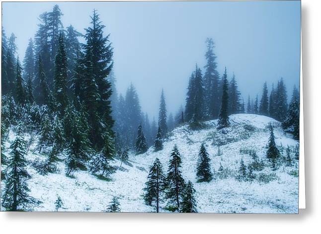 Pierce County Greeting Cards - Snowy Paradise Greeting Card by Rich Leighton