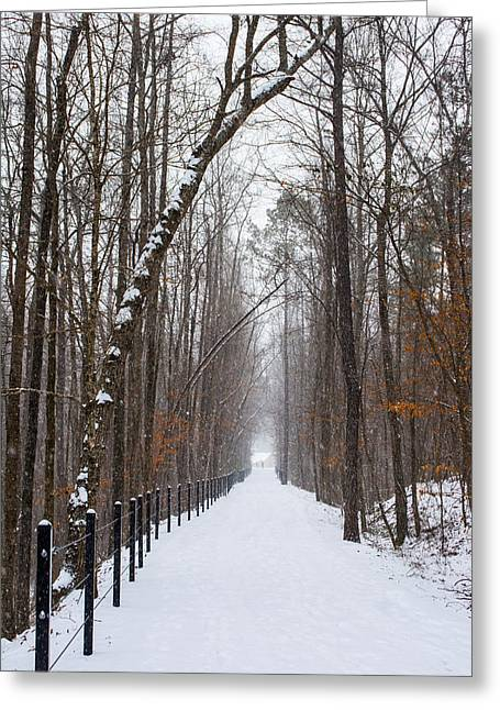 Jogger Greeting Cards - Snowy Path Greeting Card by Parker Cunningham
