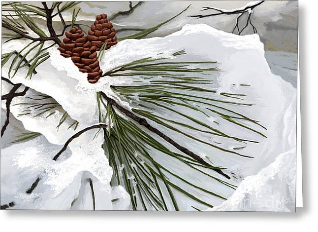 Evergreen With Snow Greeting Cards - Snowy Pine  Greeting Card by Jackie Case