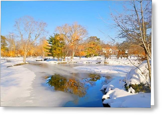 Snowy Pond Greeting Card by Diana Angstadt
