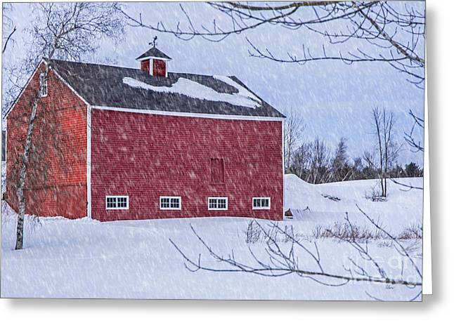 Old Maine Barns Greeting Cards - Snowy Red Barn Greeting Card by Alana Ranney
