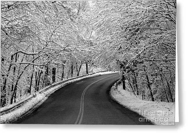 Overhanging Snow Greeting Cards - Snowy Ride Greeting Card by Jayne Carney