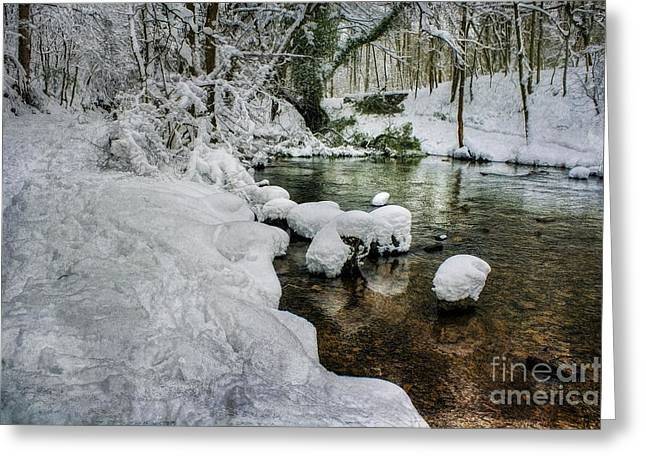 Temperature Greeting Cards - Snowy River Bank Greeting Card by Ian Mitchell