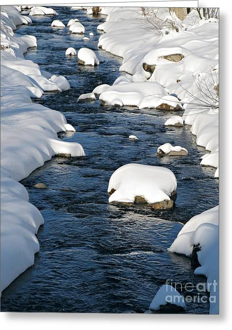 Snow-covered Landscape Greeting Cards - Snowy River view Greeting Card by Kiril Stanchev