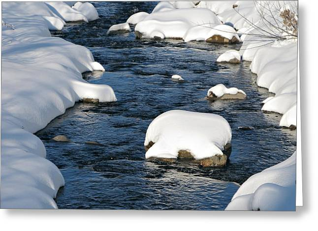 Snowy River view Greeting Card by Kiril Stanchev