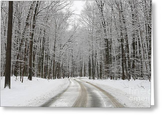Snowy Road Greeting Cards - Snowy Road in Oak Openings 7058 Greeting Card by Jack Schultz