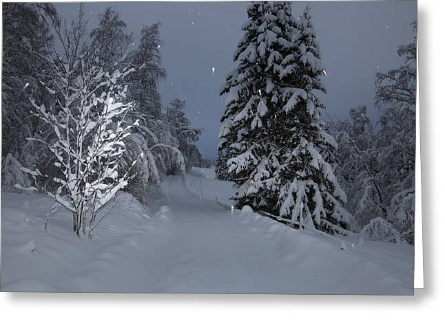 Road Covered With Snow Greeting Cards - Snowy road Greeting Card by Intensivelight