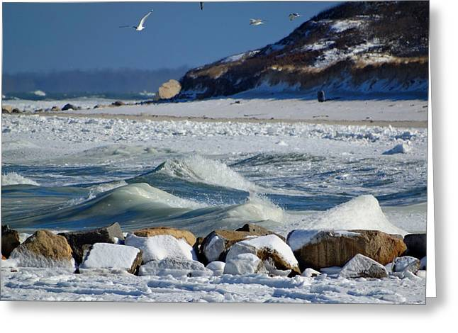 Harbor Sesuit Harbor Greeting Cards - Snowy Seashore Greeting Card by Dianne Cowen