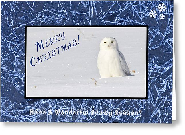 Snowie Greeting Cards - Snowy Season Greeting Card by Dee Cresswell