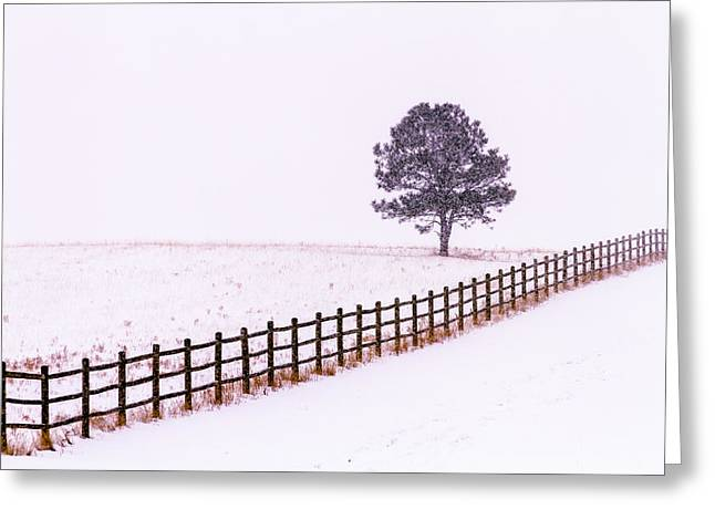 Snow-covered Landscape Greeting Cards - Snowy Solitude Greeting Card by Teri Virbickis