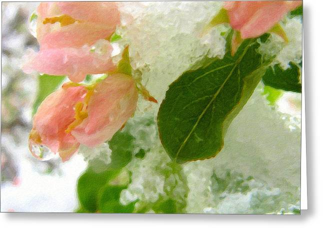 Snowstorm Greeting Cards - Snowy Spring 1 - Digital Painting Effect Greeting Card by Rhonda Barrett
