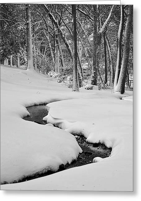 Jeka World Photography Greeting Cards - Snowy Stream Greeting Card by Jeff Rose