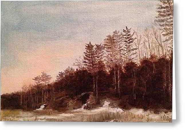 Snowy Night Night Greeting Cards - Snowy Trail Greeting Card by Catherine Maroney